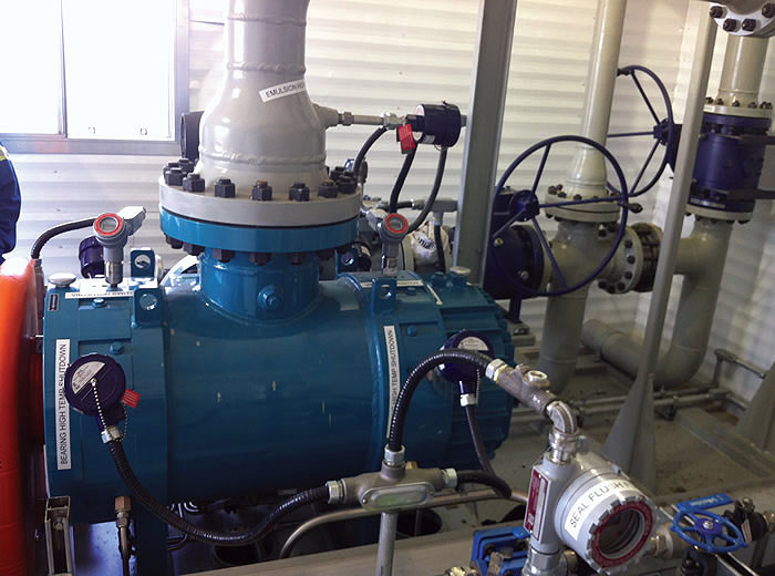 Leistritz Multiphase Wellhead System (MWS)