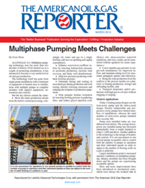 Multiphase Pumping Meets Challenges (Reprint)
